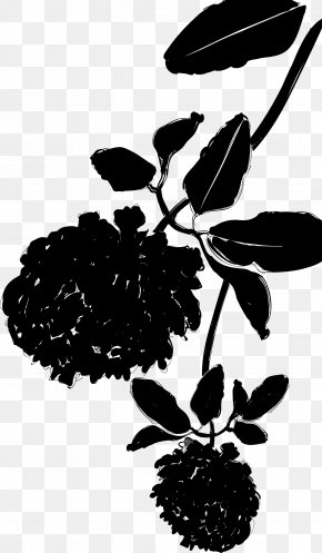 M Flower Plant Stem Leaf Silhouette - Black & White PNG