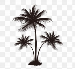 Black Palm Tree Pattern - Arecaceae Coconut Tree PNG
