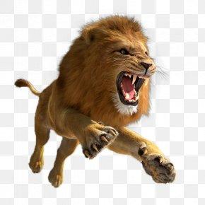 Leaping Lion - Lion Quest Simulator Tiger 3D Computer Graphics Lion Hunter Forest Escape PNG