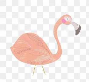 Pink Swan - Beak Flamingo PNG