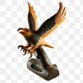 Eagle Model - Eagle Hawk Google Images Download PNG