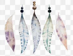 Beautiful Watercolor Feather - Watercolor Painting Drawing Illustration PNG