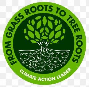 Tree - Tree Logo Root PNG