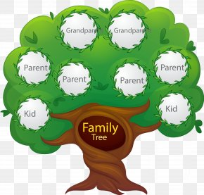Vector Hand Painted Family Tree - Family Tree Euclidean Vector Generation PNG