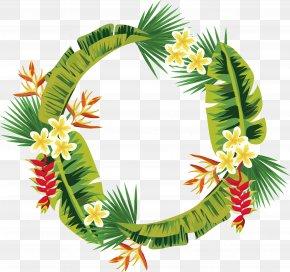 Palm Leaf Decoration Box - Leaf Palm Branch Arecaceae PNG