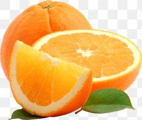 Orange Image - Orange Blog Clip Art PNG