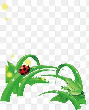 Frog Pond Green Leaves Ladybug Poster Element - Euclidean Vector Element Clip Art PNG