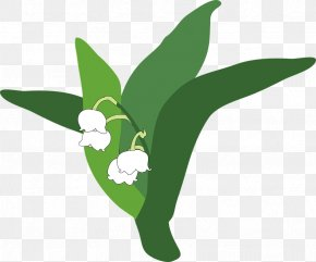 Lily Of The Valley Pic - Lily Of The Valley Clip Art PNG