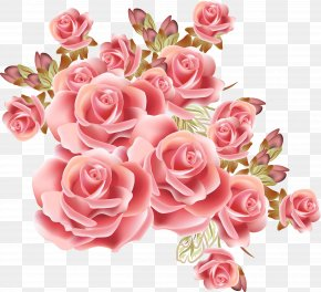 Dream Pink Rose Pattern - Rose Flower Drawing Stock Photography PNG
