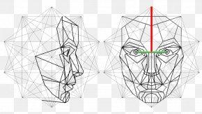 Golden Ratio Human Face - Golden Ratio Face Human Head Mask PNG
