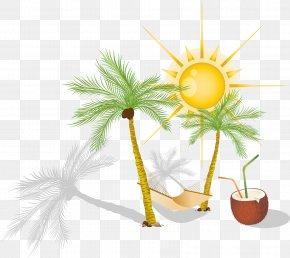 Vector Coconut Trees - Hammock Arecaceae Clip Art PNG