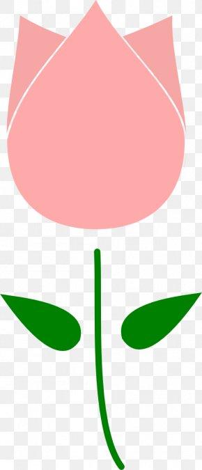 Tulip Image - Tulip Flower Free Content Clip Art PNG