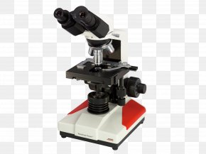Microscope - Microscope Laboratorios Louis Pasteur S.A.S. Light-emitting Diode Objective Laboratory PNG