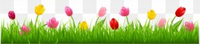 Grass With Colorful Tulips Clipart - Parrot Tulips Flower Clip Art PNG