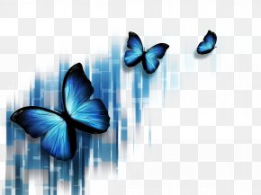 Colorful Butterfly - Butterfly Blue Stock Photography Microsoft PowerPoint Illustration PNG