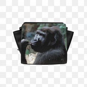 Gorilla - Common Chimpanzee Gorilla Primate Animal Lemur PNG