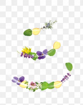 Floral Design Product Graphics Font PNG