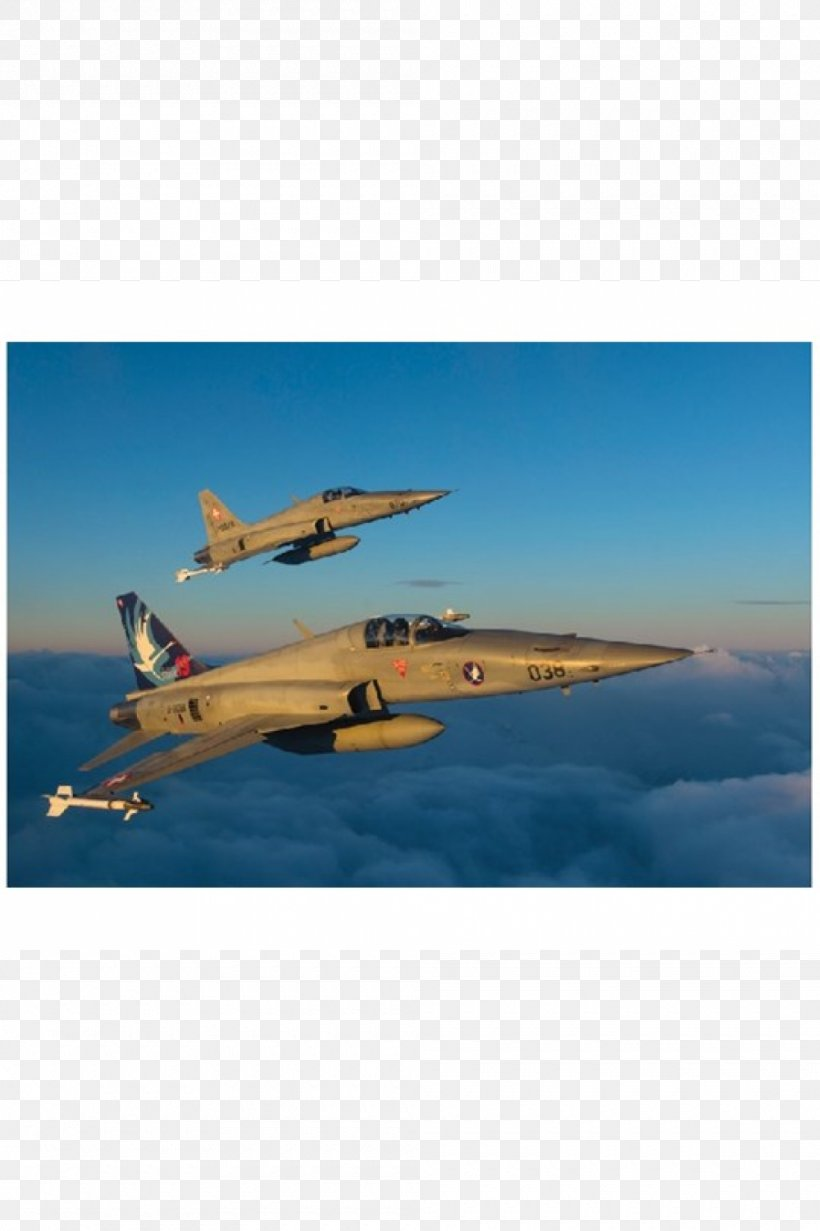 Northrop F-5 Fighter Aircraft Airplane 1:72 Scale, PNG, 1000x1502px, 172 Scale, Northrop F5, Air Force, Aircraft, Airplane Download Free