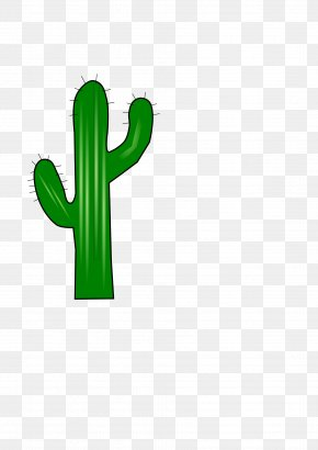 Cactus - Cactaceae Clip Art PNG