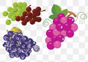 Grapes - Grape Wine Drink Watermelon PNG