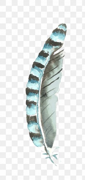 Watercolor Feathers - Watercolor Painting PNG