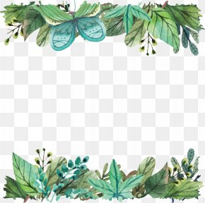 Watercolor Green Leaf Border - IPhone 5s Leaf Telephone Tree Silicone PNG