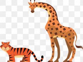 Cheetah - Cheetah Cat Giraffe Wildlife Clip Art PNG