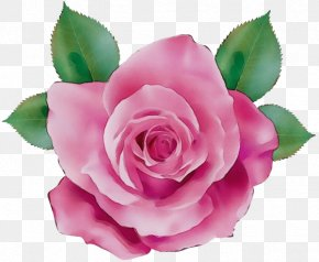Camellia Artificial Flower - Watercolor Pink Flowers PNG
