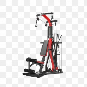 Gym Fitness Equipment - Exercise Machine Fitness Centre Exercise Equipment Physical Exercise PNG