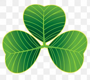 ST PATRICKS DAY - Saint Patrick's Day Shamrock Clover Clip Art PNG
