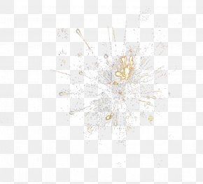 Fireworks Shine - KIu30fbSEu30fbKI Vol.1uff5einternaluff5e 10,000 Promises. Compact Disc DVD Pattern PNG