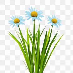 Blue Flowers - Texture Mapping Flower 3D Computer Graphics Animation PNG