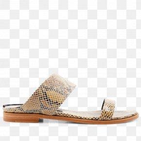 IT Trade Fair Poster - Slide Sandal Shoe PNG