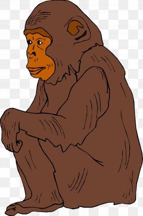 Chimpanzee - Chimpanzee Ape Primate Orangutan Clip Art PNG