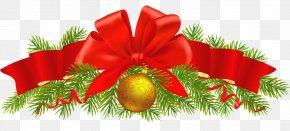 Christmas - Christmas Ornament Greeting & Note Cards Evergreen Marine Corp. PNG