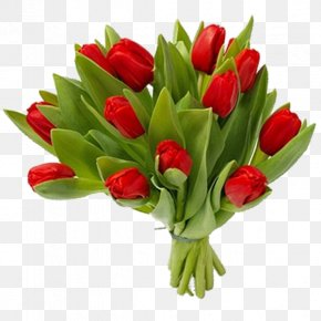 Bouquet Of Flowers - Flowering Plant Cut Flowers Flower Bouquet Tulip PNG