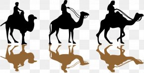 Vector Camel Silhouette - Islam Ramadan Mosque Eid Mubarak Eid Al-Fitr PNG