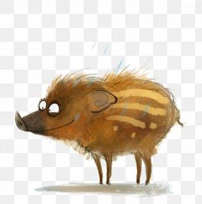 Cartoon Wild Boar - Cartoon Wild Boar Drawing Illustration PNG