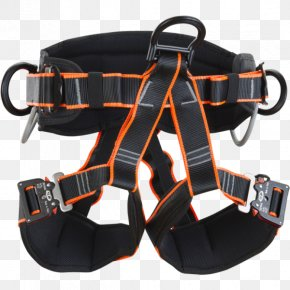 Height Rescue - Climbing Harnesses Technology Alkaline Phosphatase Body PNG