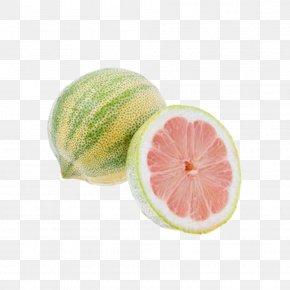 Pink Zebra Stripes Lemon Lemon Products, Map - Grapefruit Key Lime Variegated Pink Lemon Lemonade PNG