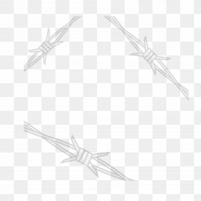Black Simple Rope - Starfish White Black Line Art Pattern PNG