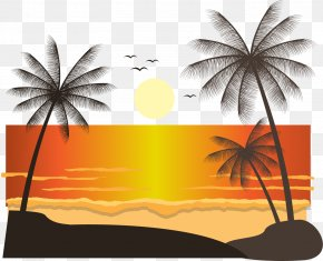 Coconut Tree Beach At Sunset - Euclidean Vector Landscape Sunset Arecaceae PNG