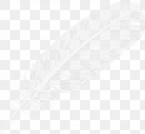 Feather - Feather Arrow Point PNG