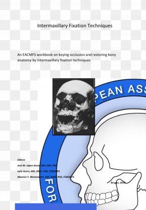 Design - Finger Human Behavior Homo Sapiens Poster PNG