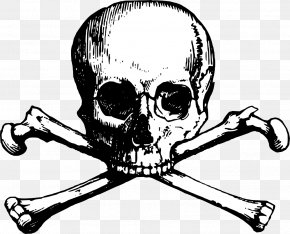 Vector Skull - Skull And Bones Skull And Crossbones Clip Art PNG
