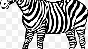 Zebra - Colouring Pages Coloring Book Zebra Child PNG