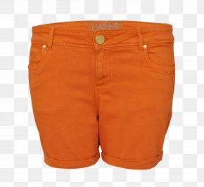 Pants - Bermuda Shorts PNG