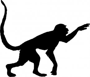 Monkey Silhouette - Red-faced Spider Monkey Silhouette Clip Art PNG