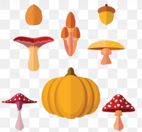 Vector Mushrooms Squash - Autumn Poster Plant PNG