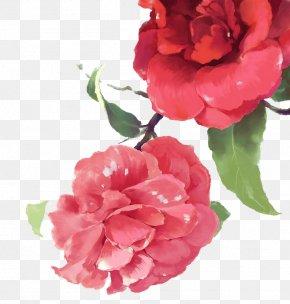 Watercolor Flowers - Watercolor: Flowers Painting PNG